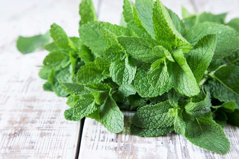 bunch of mint leaves
