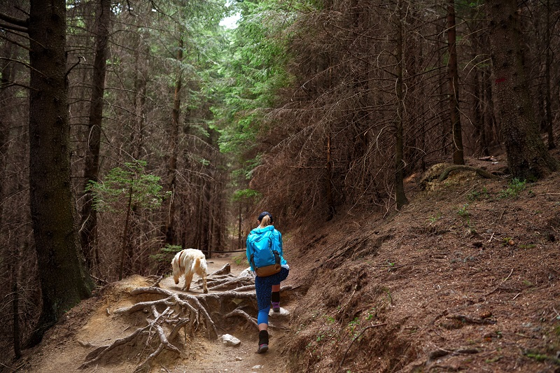Woman and dog hiking in the woods